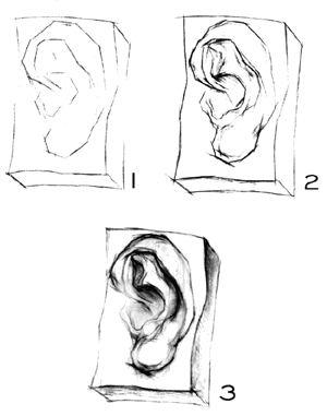 简单手绘鼻子铅笔画