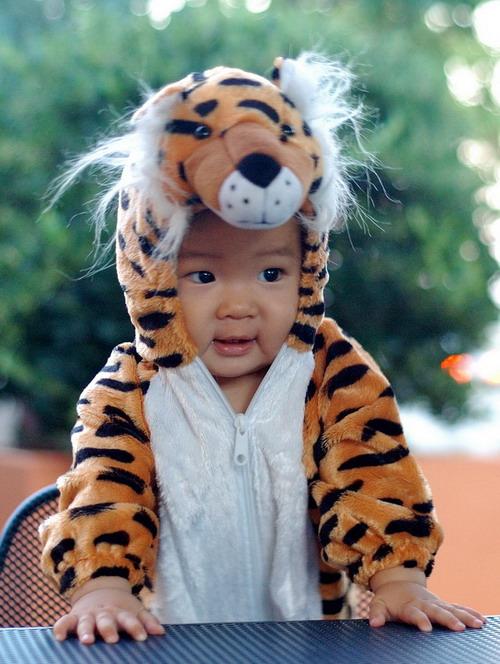 扮小老虎的小孩